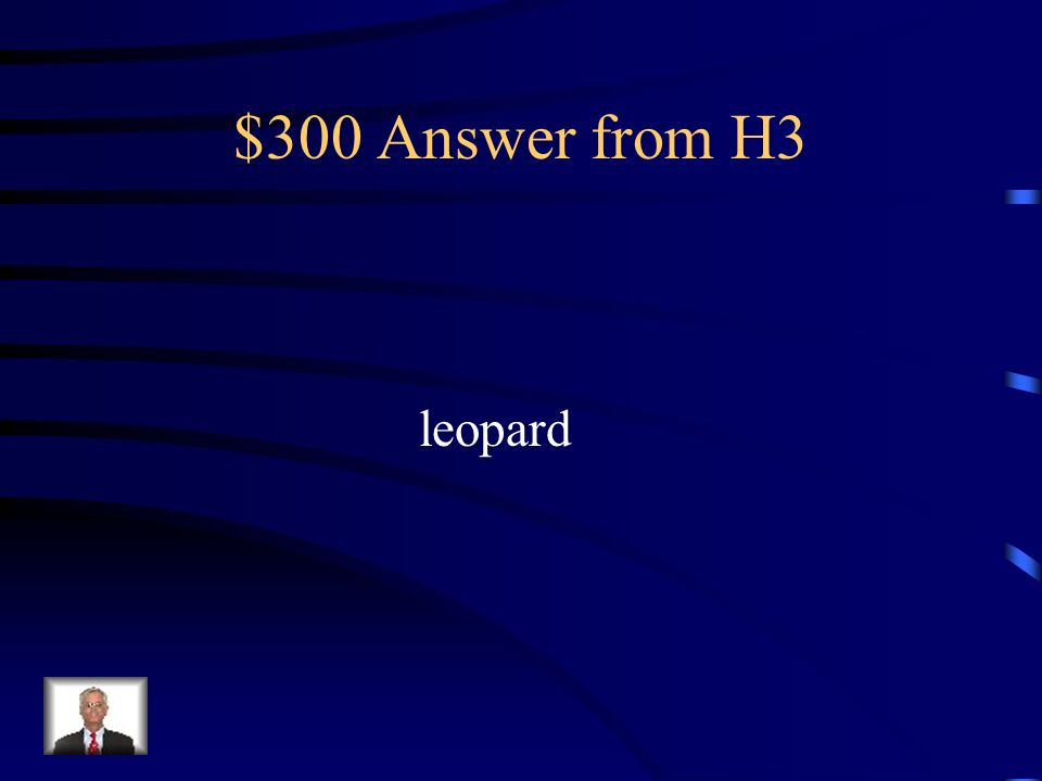 $300 Answer from H3 leopard