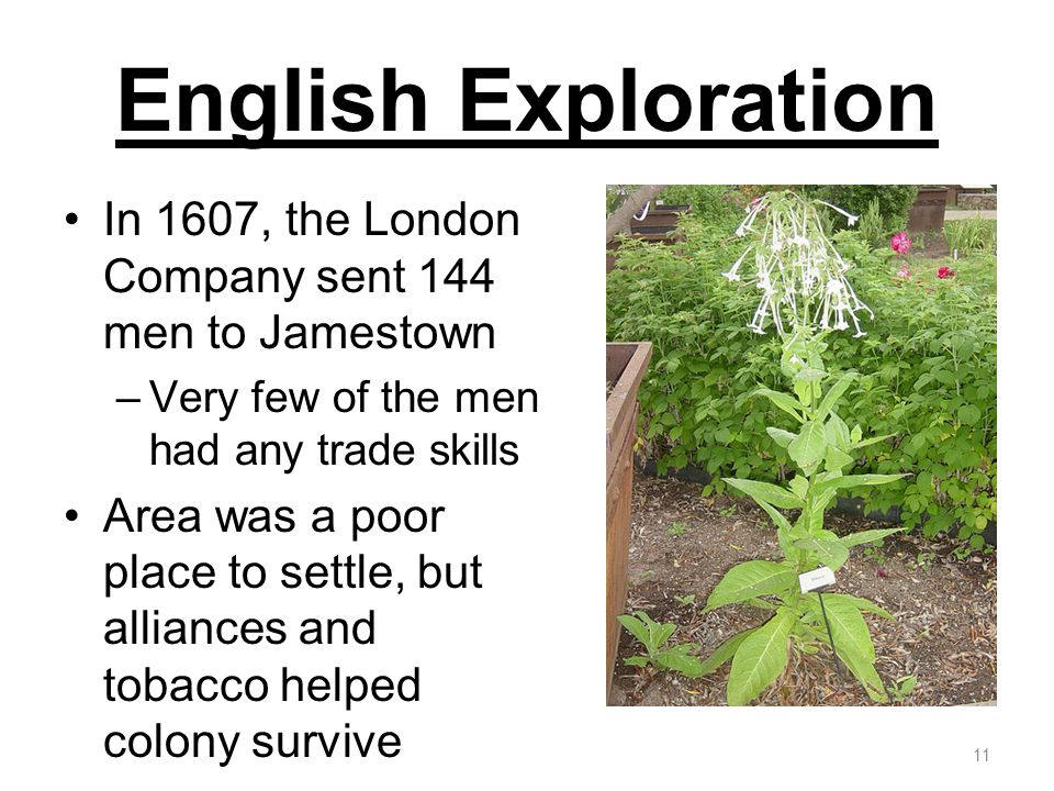 English Exploration In 1607, the London Company sent 144 men to Jamestown. Very few of the men had any trade skills.