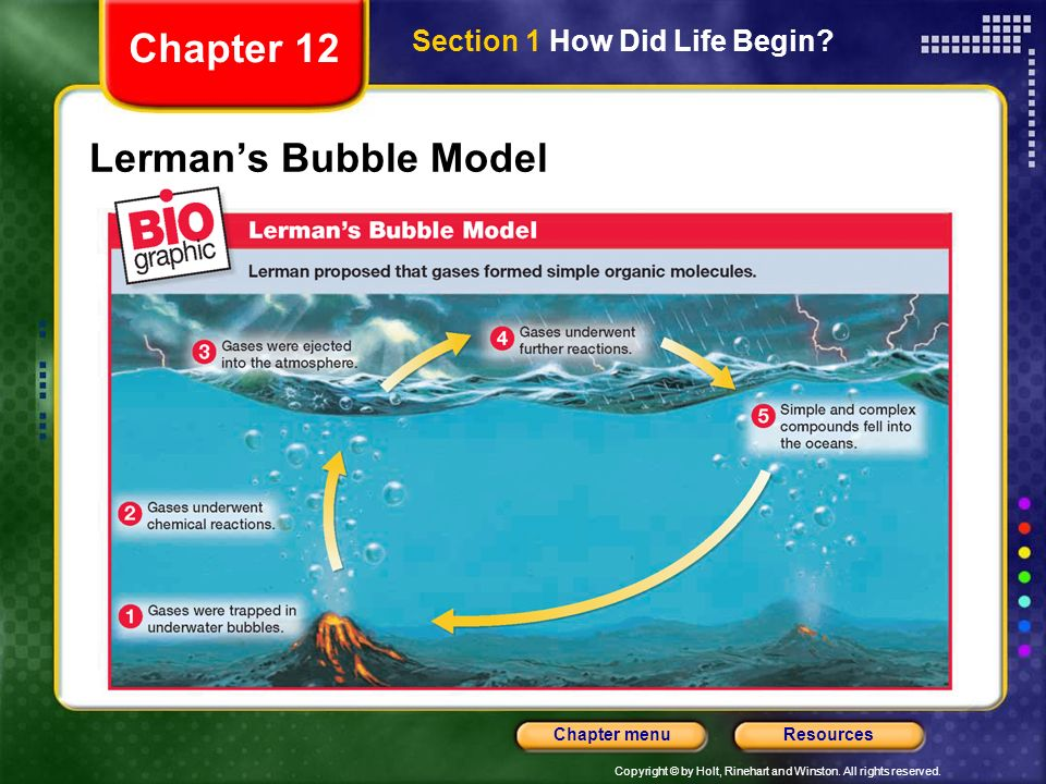 Chapter 12 Section 1 How Did Life Begin Lerman's Bubble Model