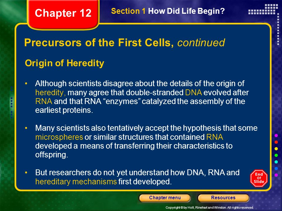 Precursors of the First Cells, continued