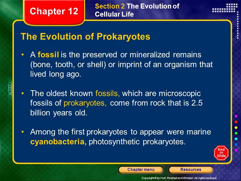 The Evolution of Prokaryotes