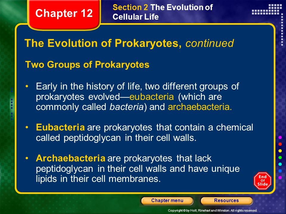 The Evolution of Prokaryotes, continued