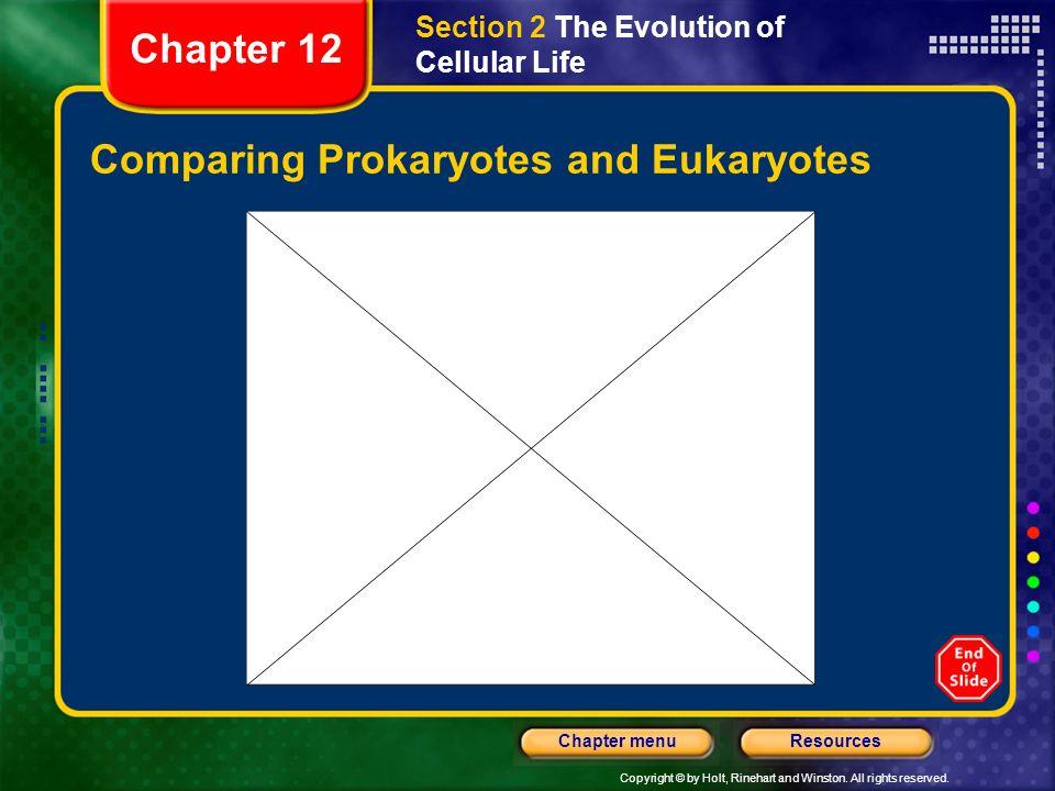 Comparing Prokaryotes and Eukaryotes