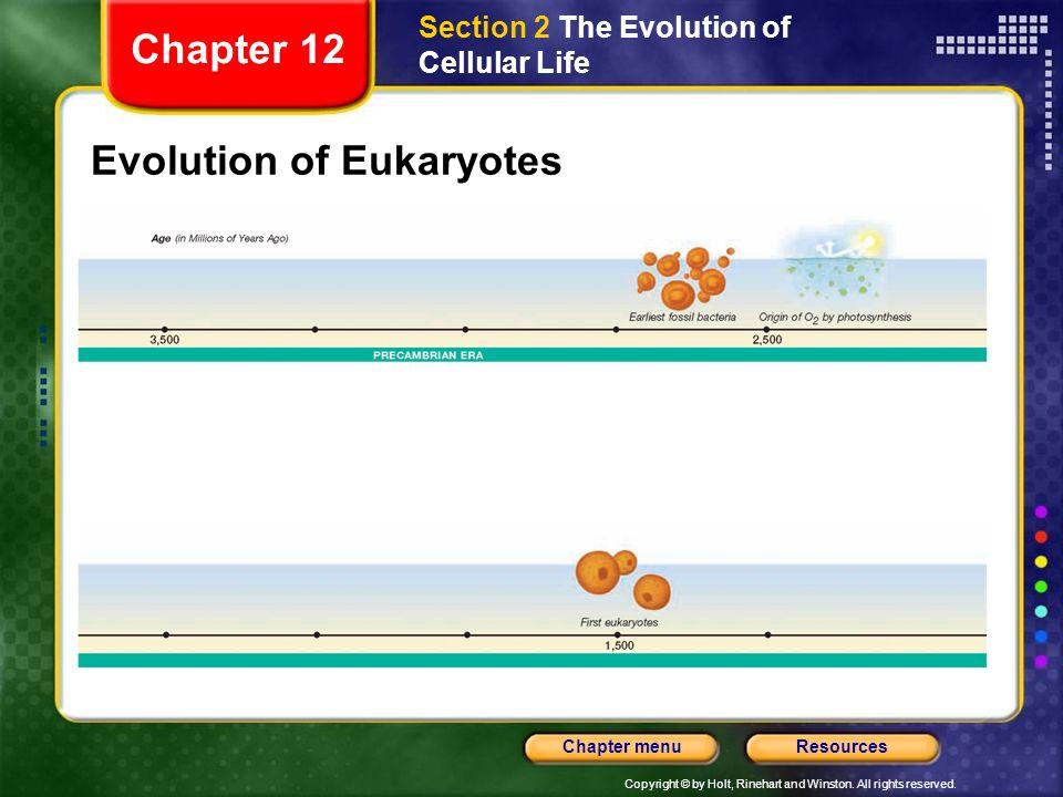 Evolution of Eukaryotes