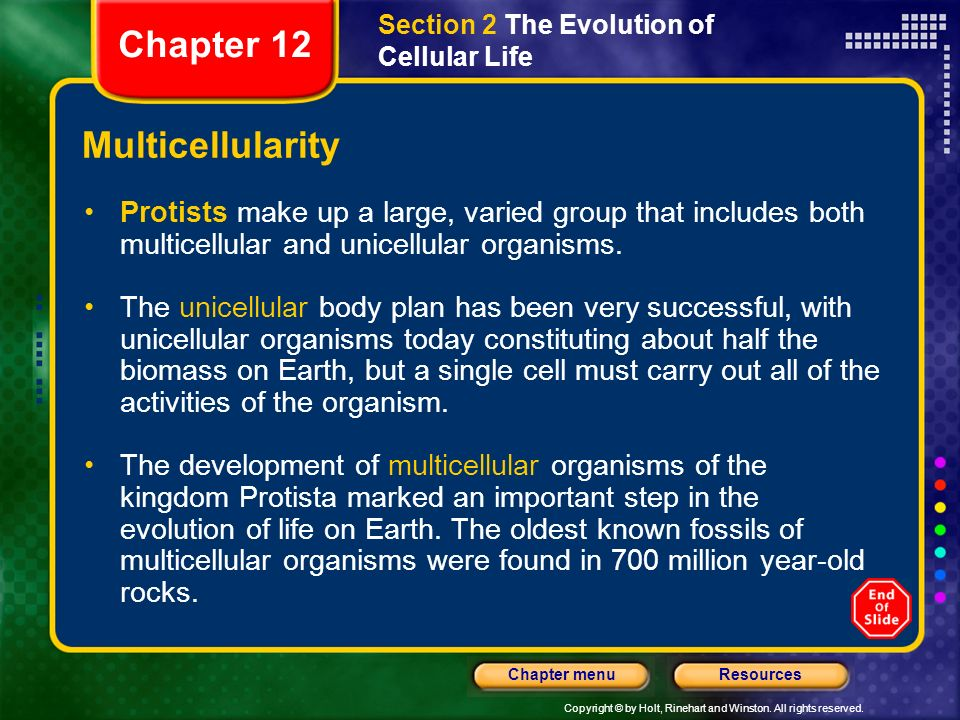Chapter 12 Multicellularity