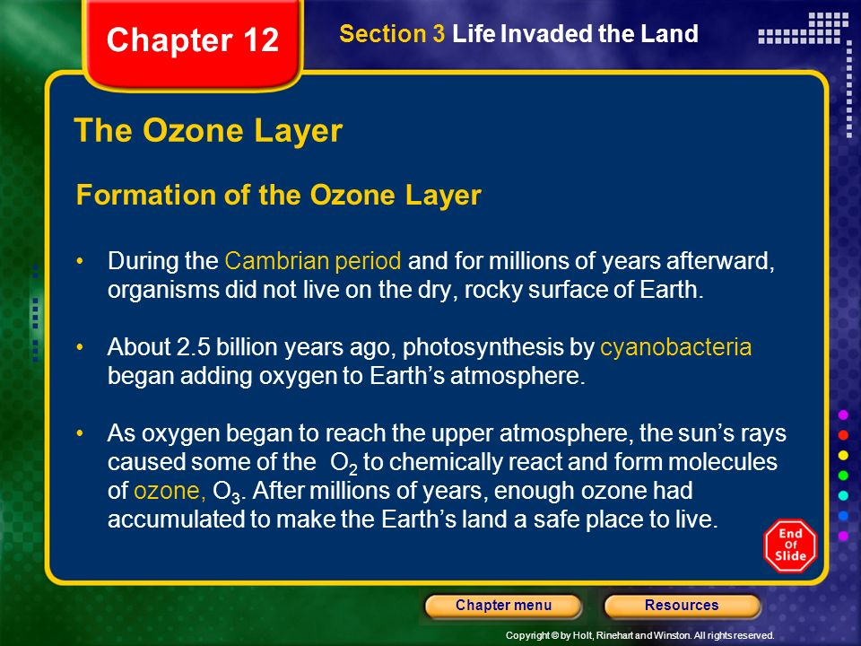 Chapter 12 The Ozone Layer Formation of the Ozone Layer