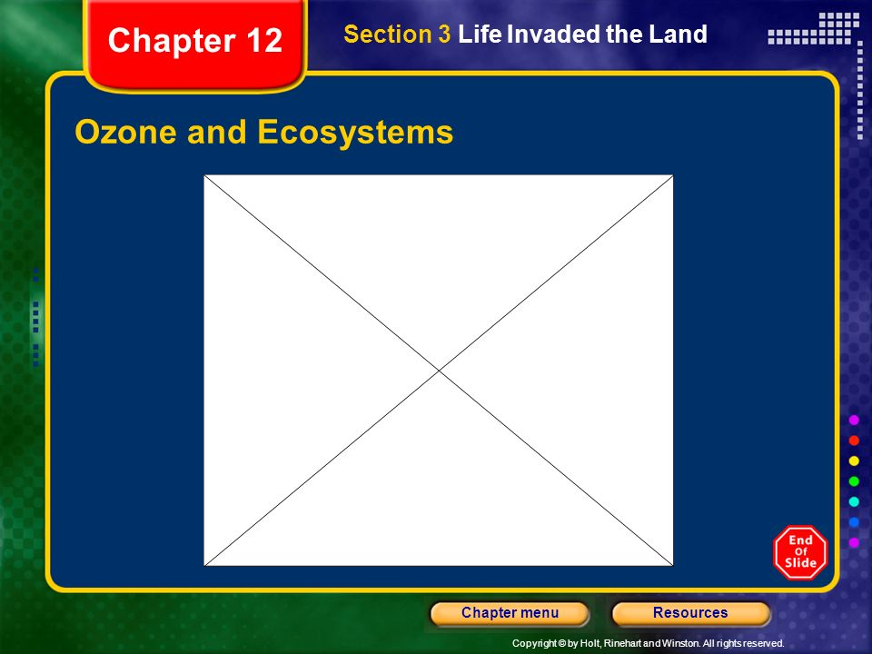 Chapter 12 Section 3 Life Invaded the Land Ozone and Ecosystems