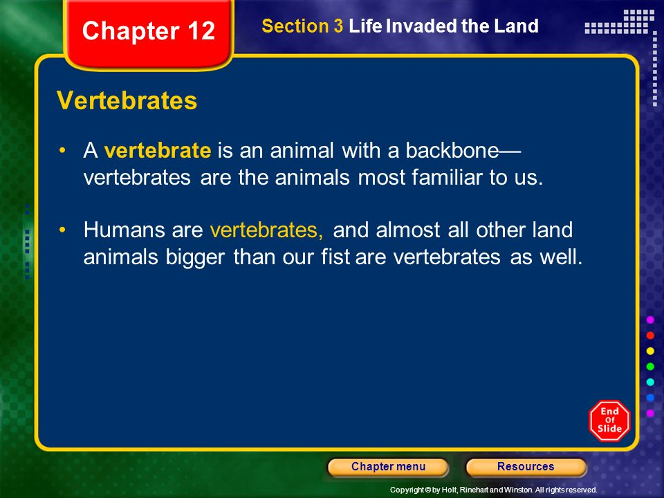 Chapter 12 Section 3 Life Invaded the Land. Vertebrates. A vertebrate is an animal with a backbone—vertebrates are the animals most familiar to us.