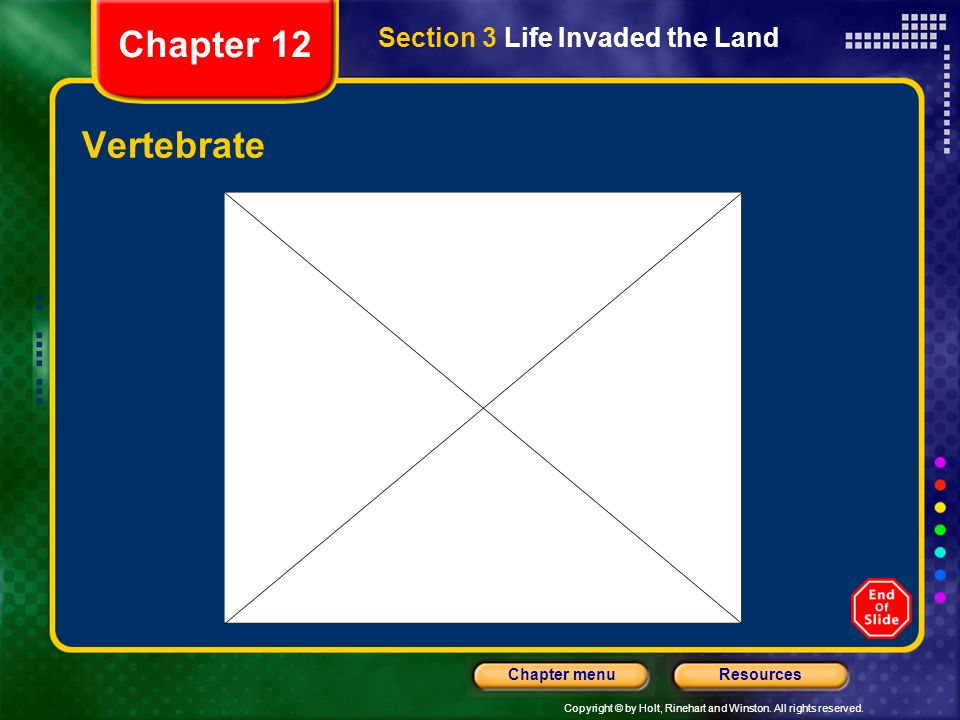 Chapter 12 Section 3 Life Invaded the Land Vertebrate