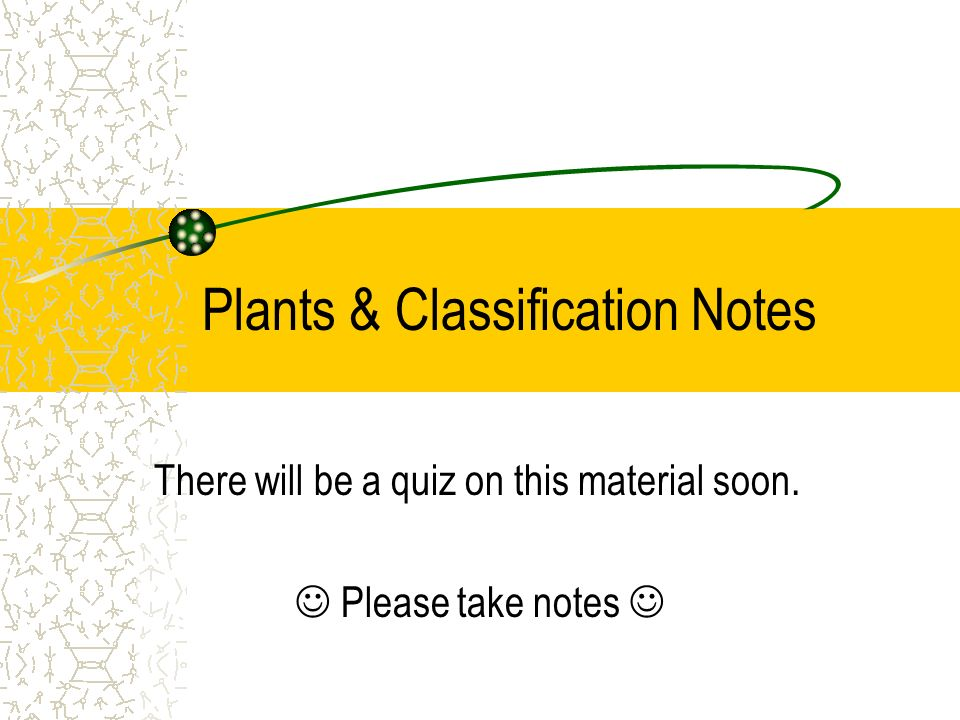 Plants & Classification Notes