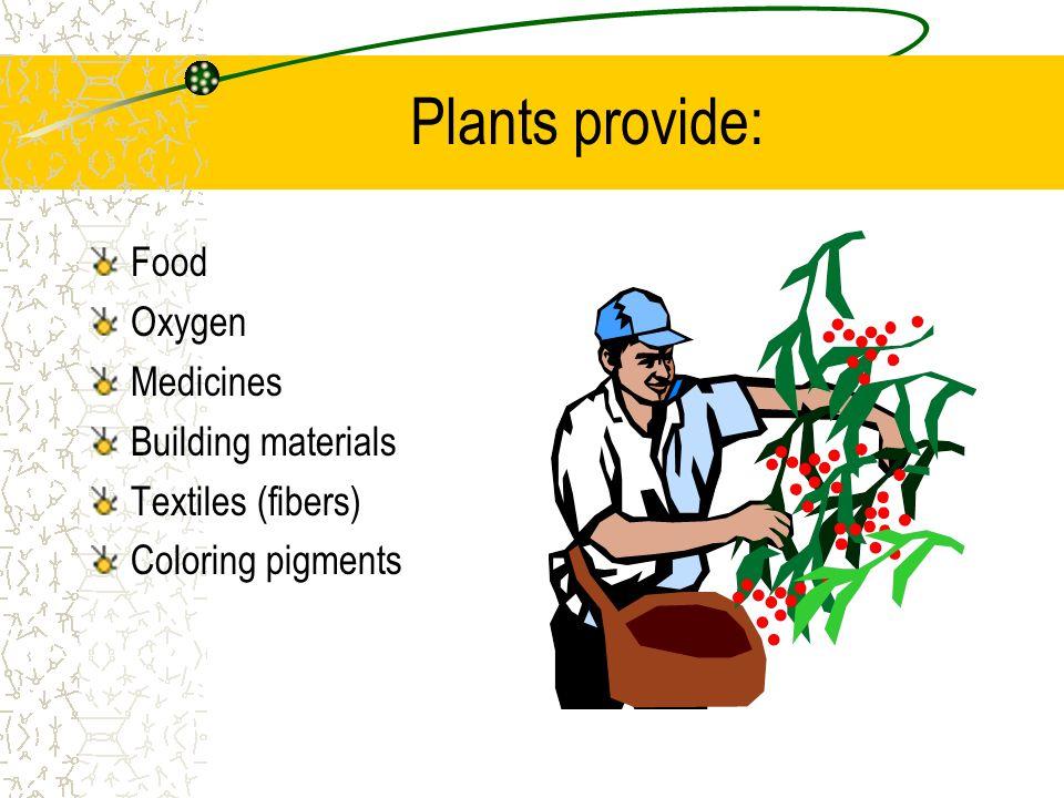 Plants provide: Food Oxygen Medicines Building materials