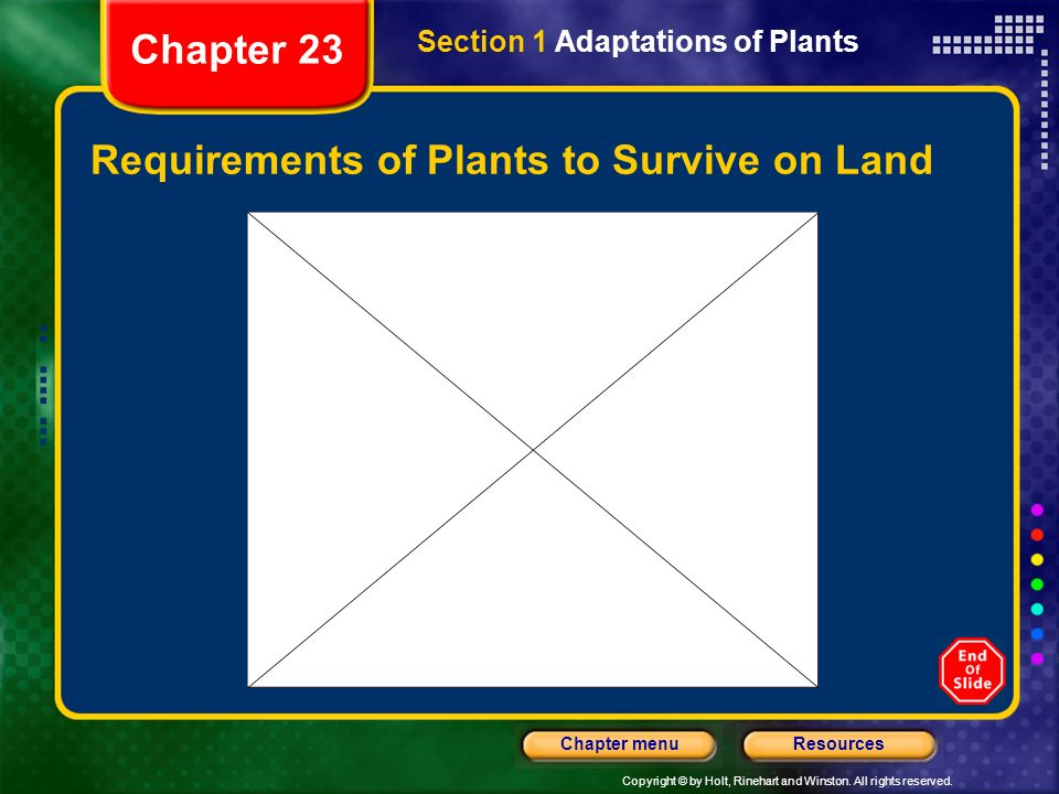 Requirements of Plants to Survive on Land