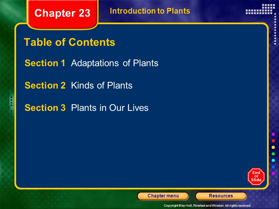 Chapter 23 Table of Contents Section 1 Adaptations of Plants
