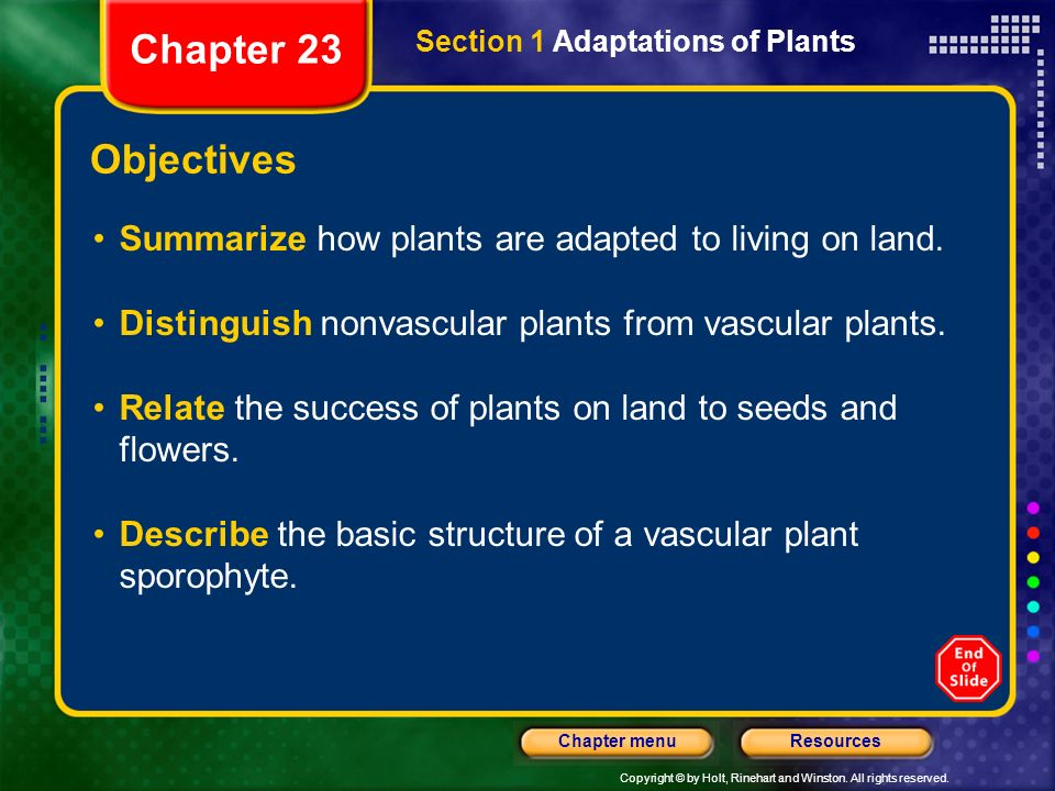 Chapter 23 Section 1 Adaptations of Plants. Objectives. Summarize how plants are adapted to living on land.