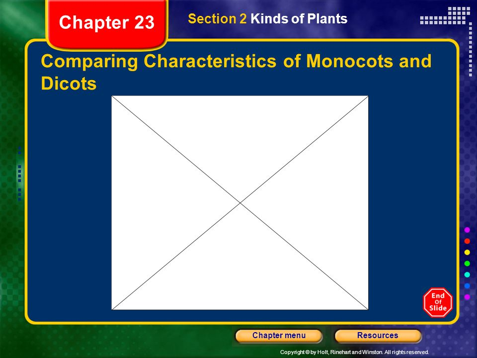 Comparing Characteristics of Monocots and Dicots