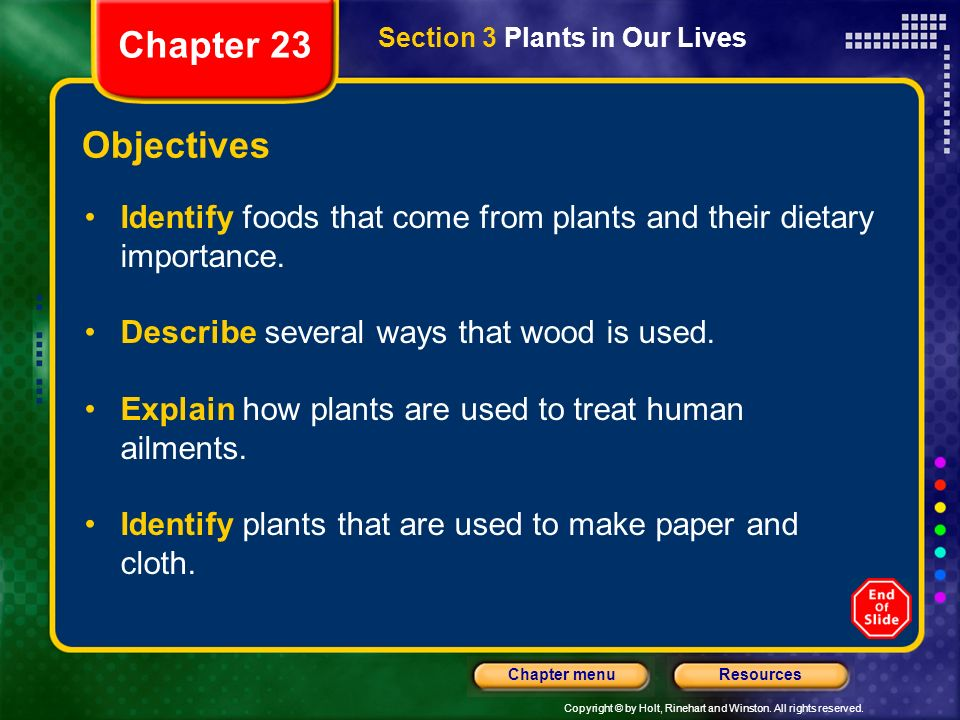 Chapter 23 Section 3 Plants in Our Lives. Objectives. Identify foods that come from plants and their dietary importance.
