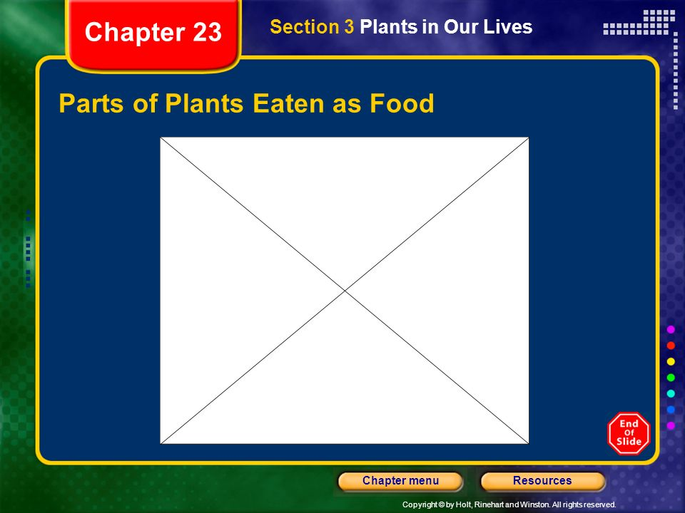 Parts of Plants Eaten as Food