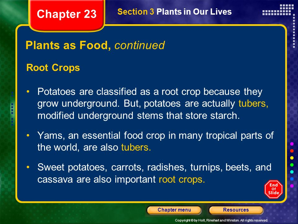 Plants as Food, continued