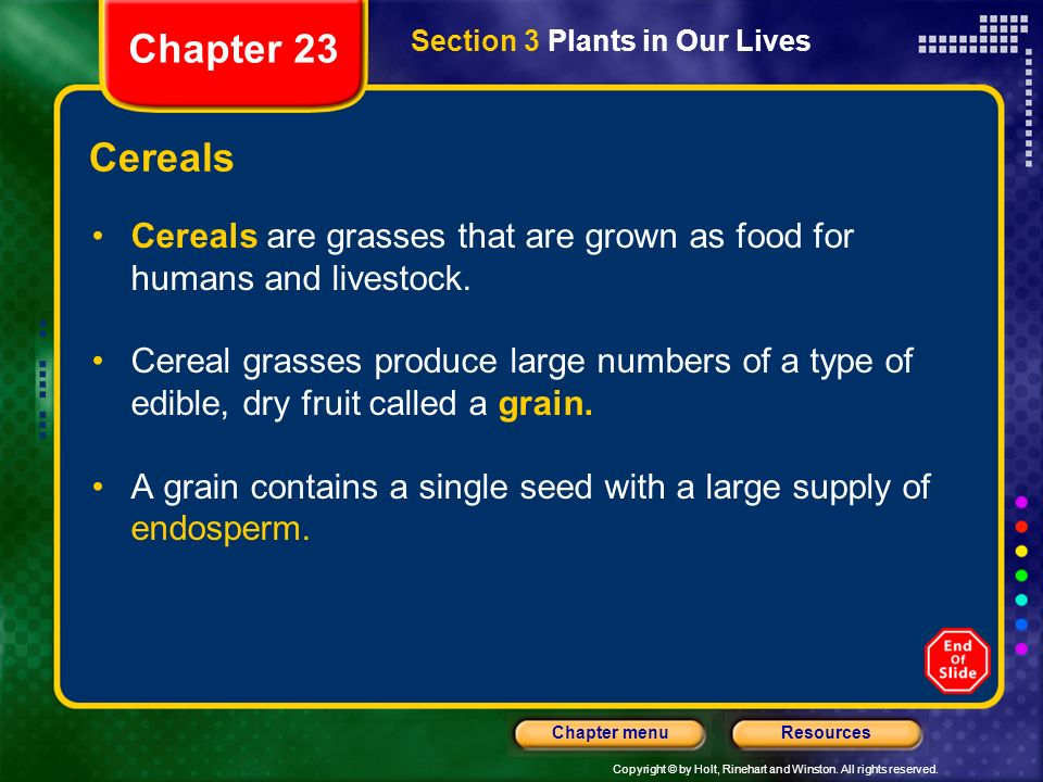 Chapter 23 Section 3 Plants in Our Lives. Cereals. Cereals are grasses that are grown as food for humans and livestock.