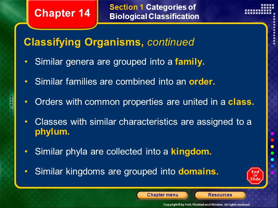 Classifying Organisms, continued