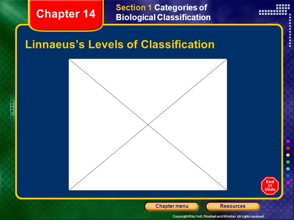 Linnaeus's Levels of Classification