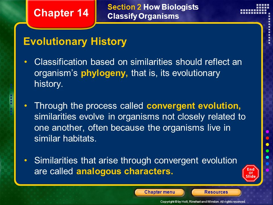 Chapter 14 Evolutionary History