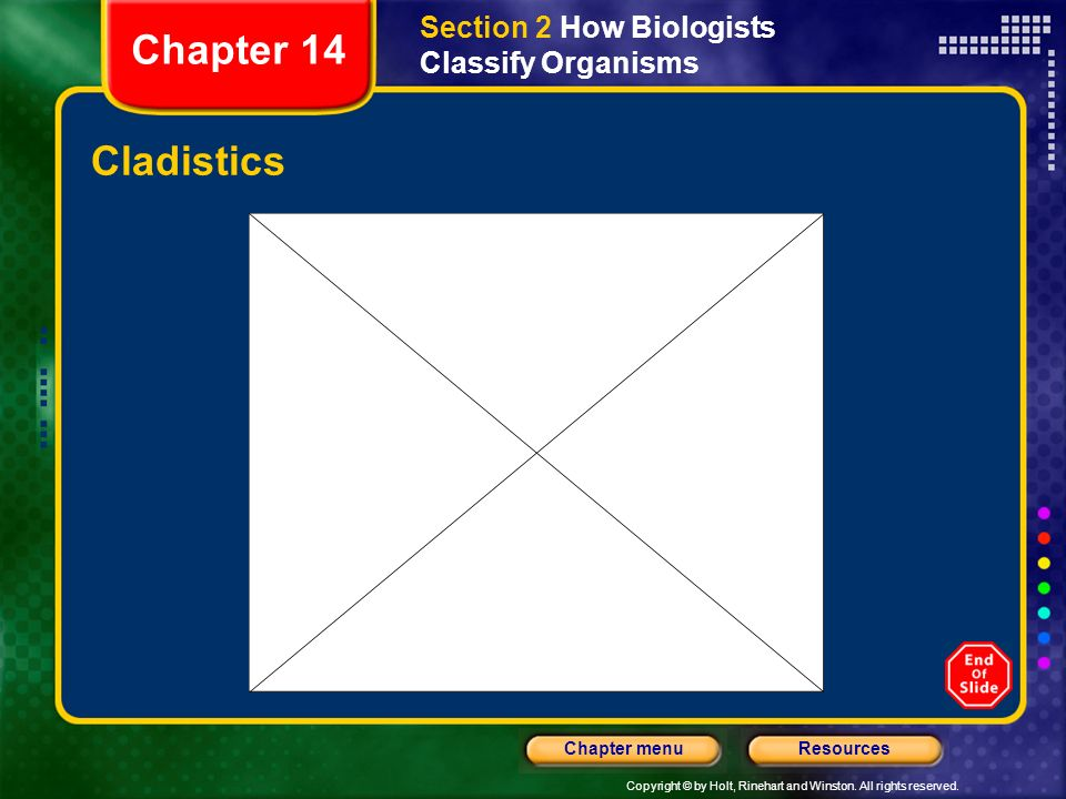 Section 2 How Biologists Classify Organisms