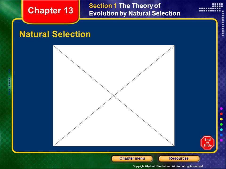 Chapter 13 Natural Selection
