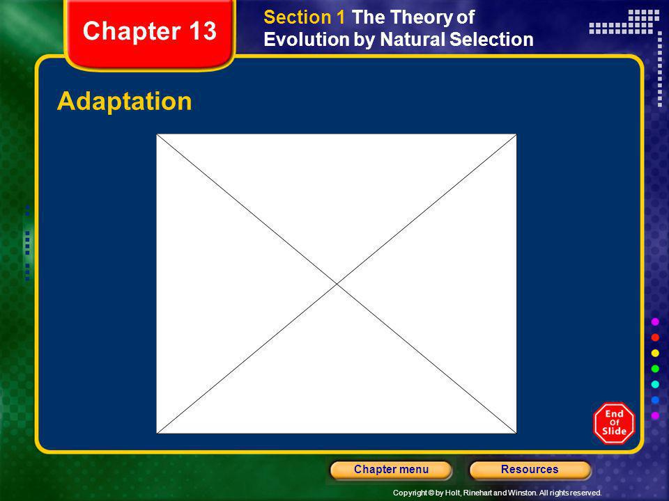 Section 1 The Theory of Evolution by Natural Selection