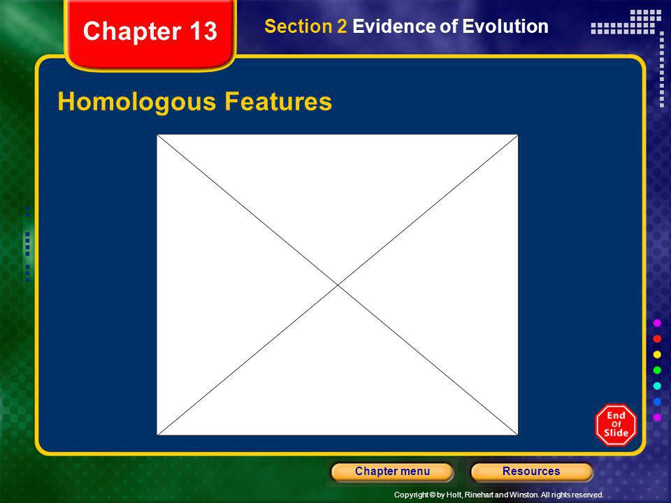 Chapter 13 Section 2 Evidence of Evolution Homologous Features