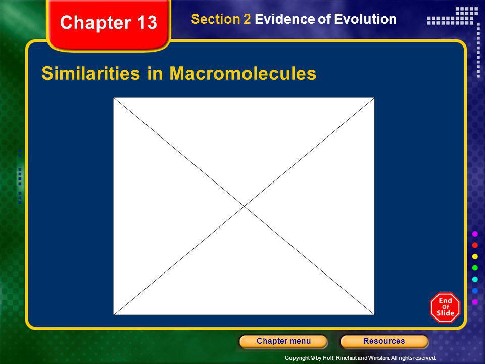 Similarities in Macromolecules