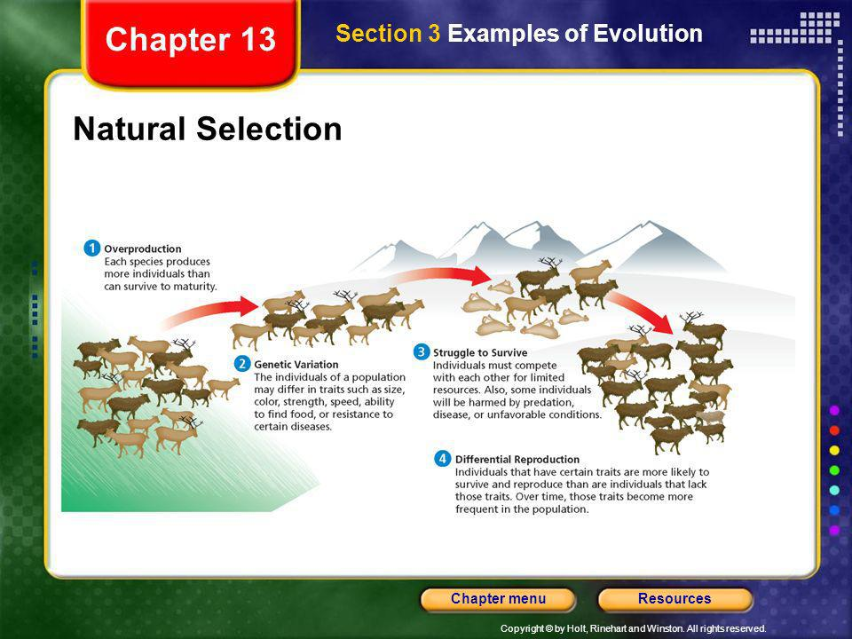 Chapter 13 Section 3 Examples of Evolution Natural Selection