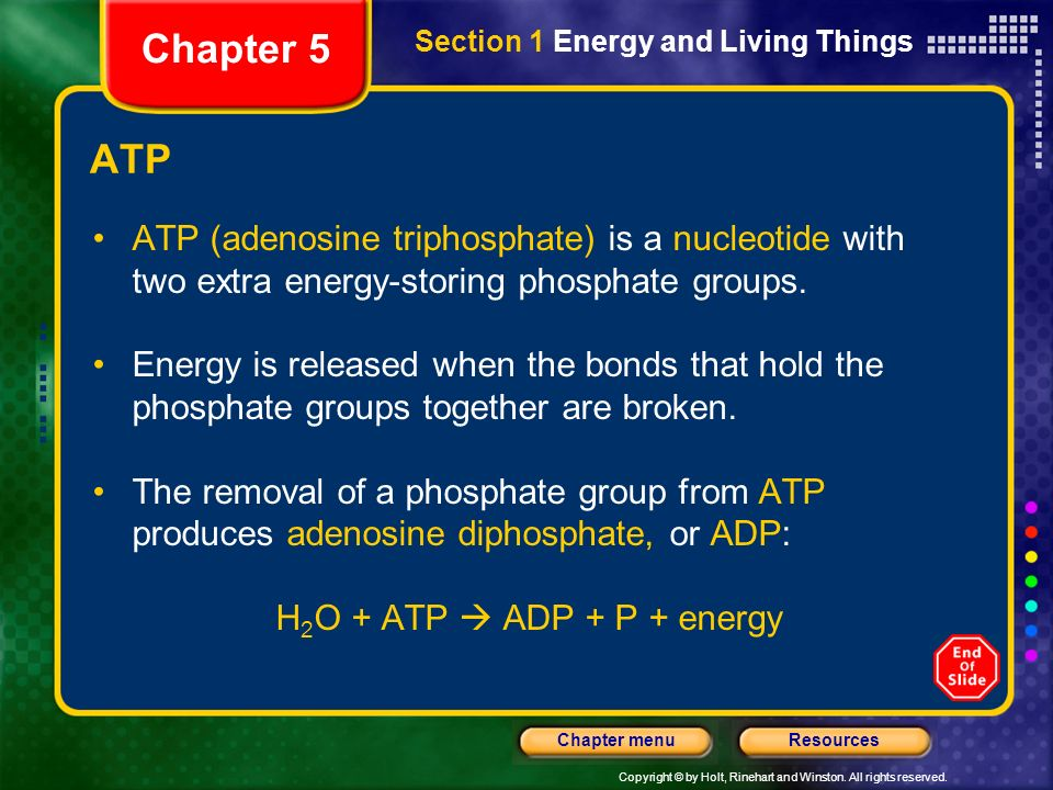 Chapter 5 Section 1 Energy and Living Things. ATP. ATP (adenosine triphosphate) is a nucleotide with two extra energy-storing phosphate groups.