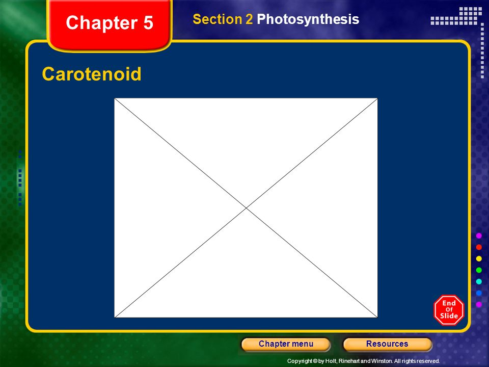 Chapter 5 Section 2 Photosynthesis Carotenoid