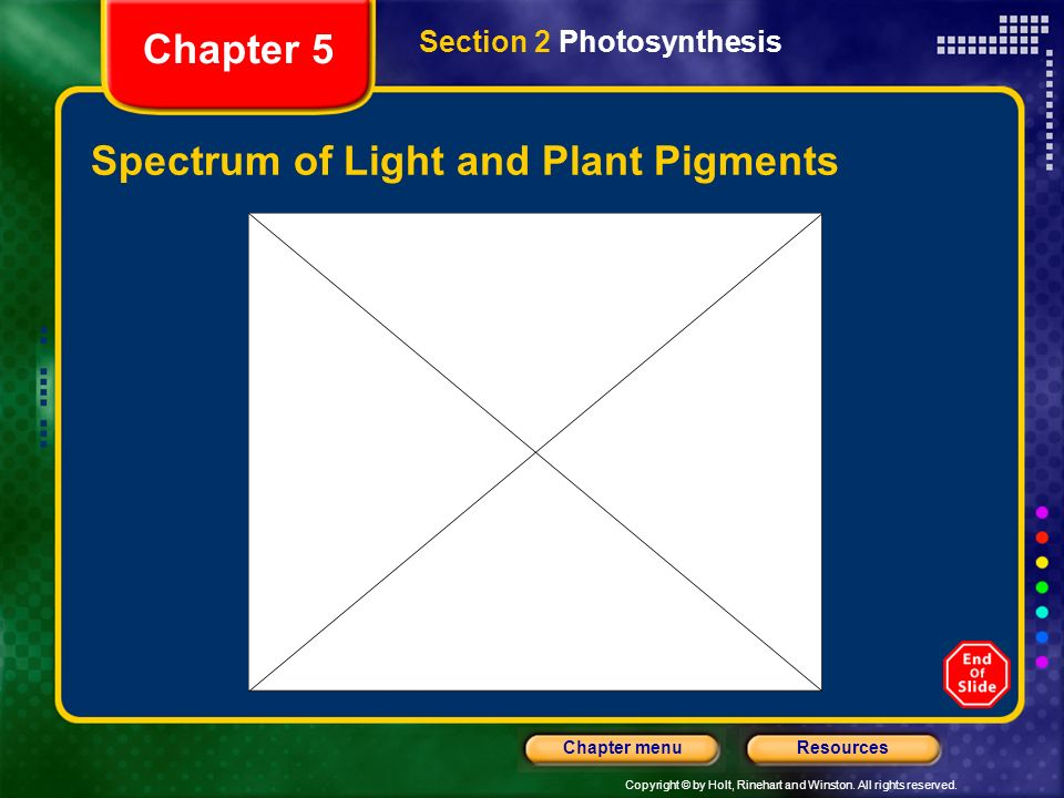 Spectrum of Light and Plant Pigments