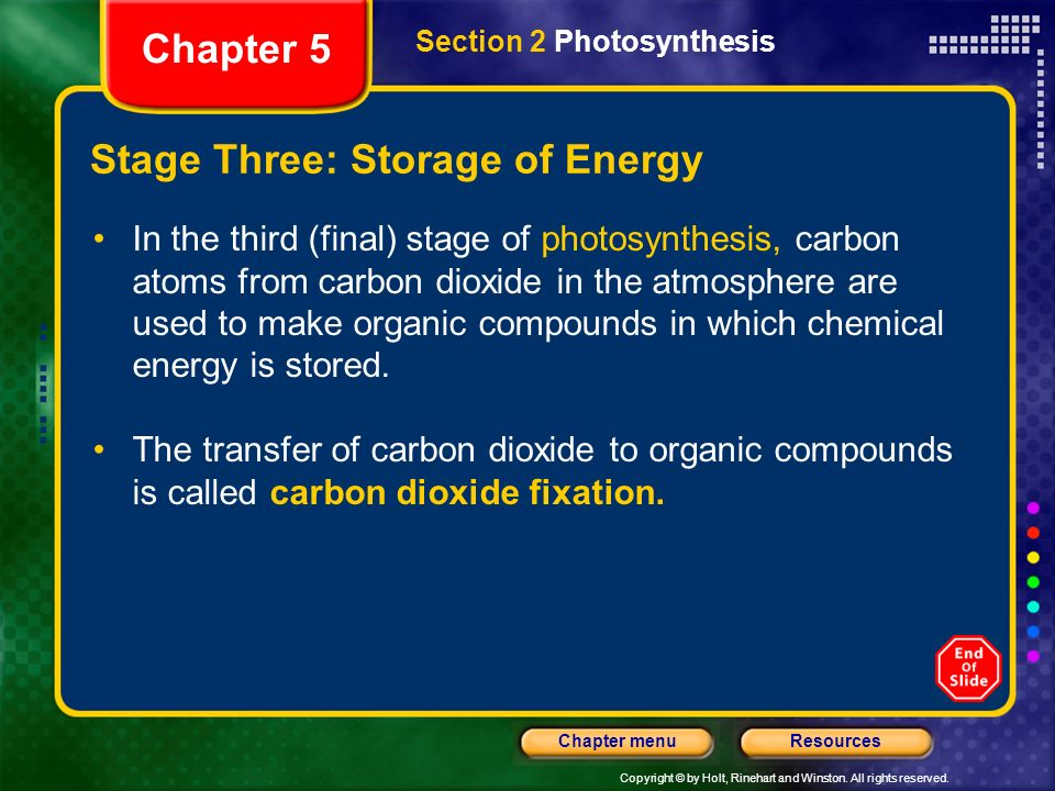 Stage Three: Storage of Energy