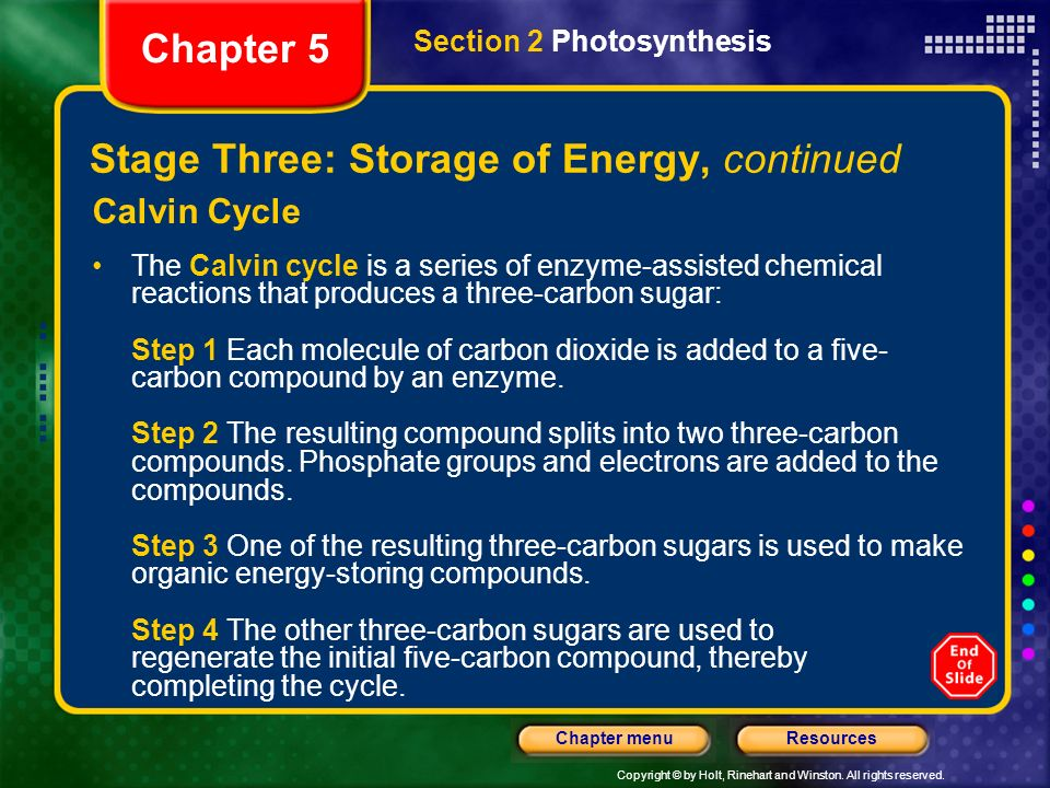 Stage Three: Storage of Energy, continued
