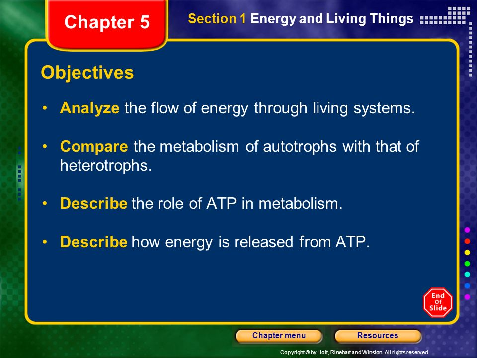 Chapter 5 Section 1 Energy and Living Things. Objectives. Analyze the flow of energy through living systems.