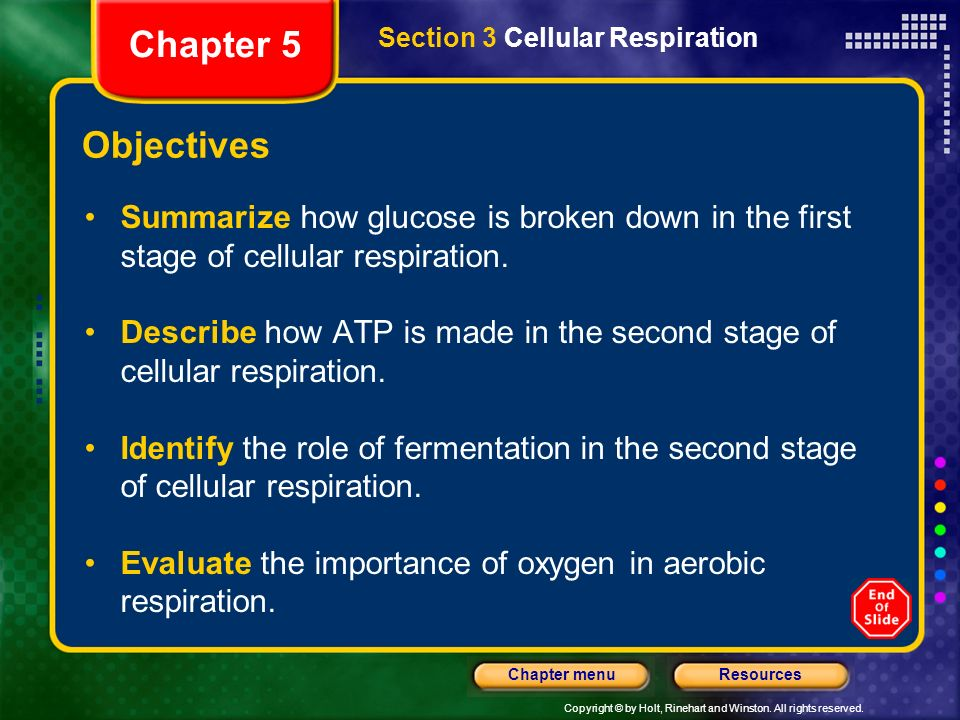 Chapter 5 Section 3 Cellular Respiration. Objectives. Summarize how glucose is broken down in the first stage of cellular respiration.