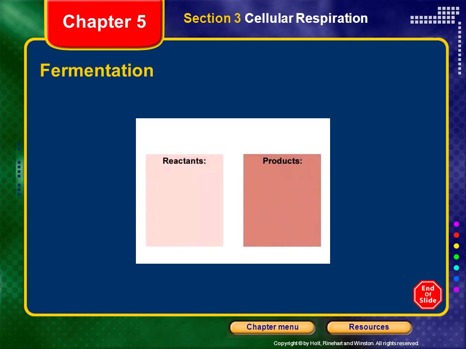Chapter 5 Section 3 Cellular Respiration Fermentation