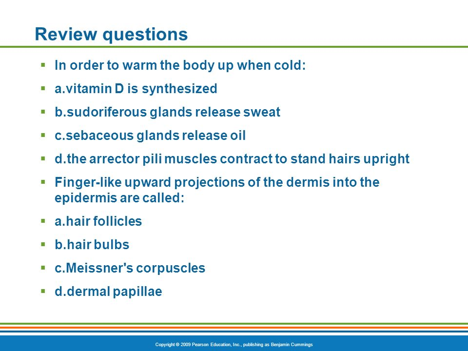 Review questions In order to warm the body up when cold: