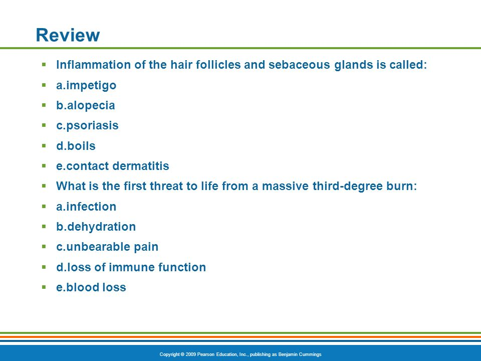 Review Inflammation of the hair follicles and sebaceous glands is called: a.impetigo. b.alopecia.