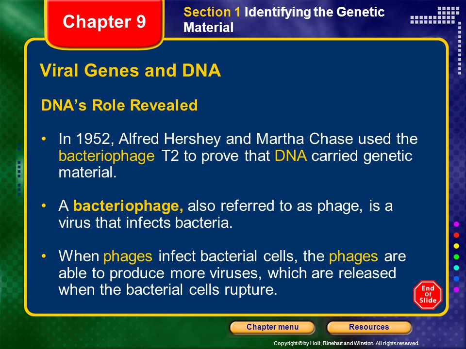 Chapter 9 Viral Genes and DNA DNA's Role Revealed