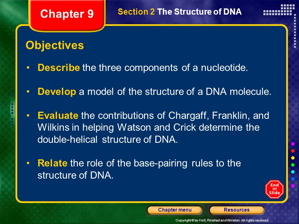 Chapter 9 Objectives Describe the three components of a nucleotide.