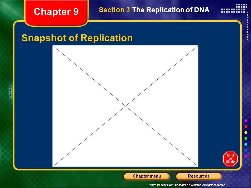 Snapshot of Replication