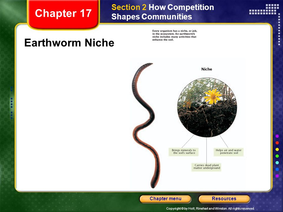 Chapter 17 Earthworm Niche