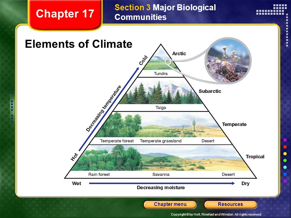 Section 3 Major Biological Communities