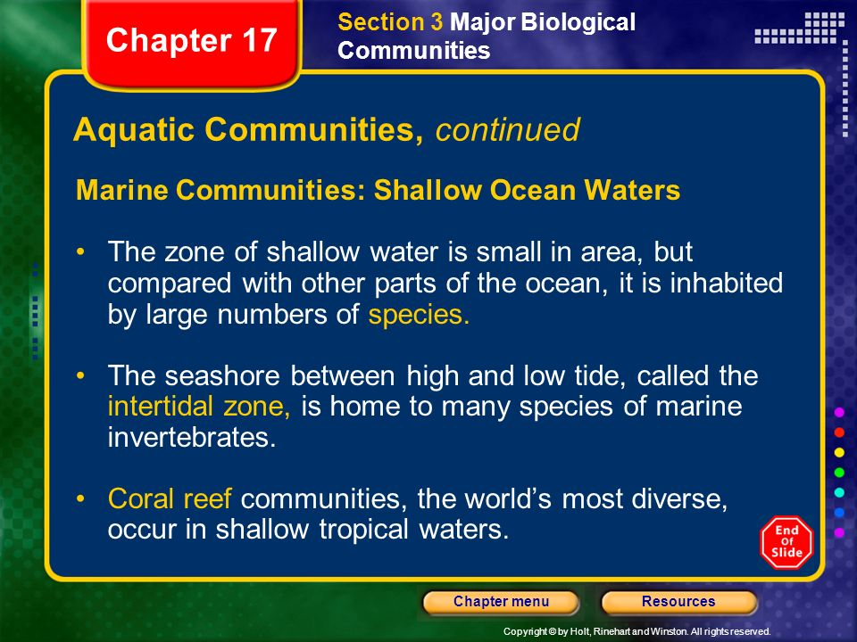 Aquatic Communities, continued