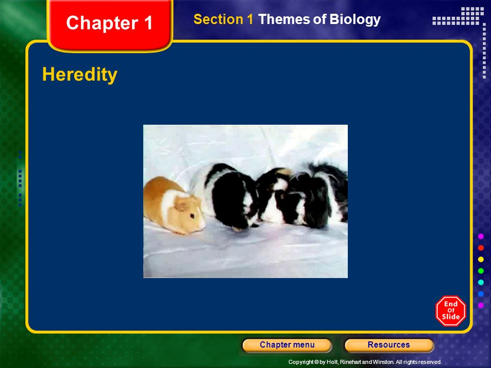 Chapter 1 Section 1 Themes of Biology Heredity