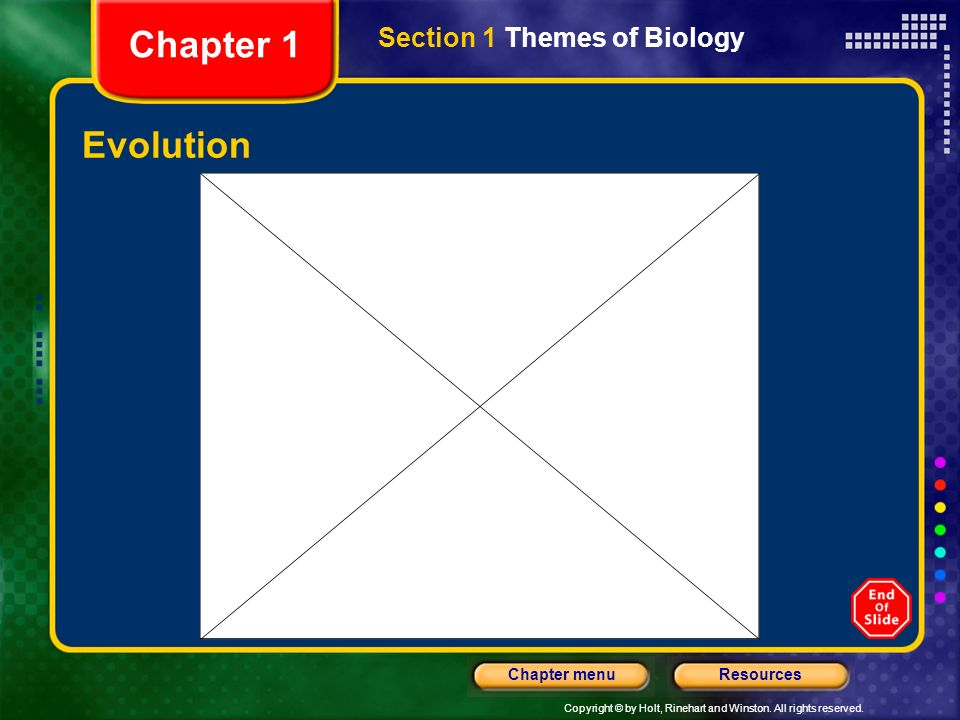 Chapter 1 Section 1 Themes of Biology Evolution